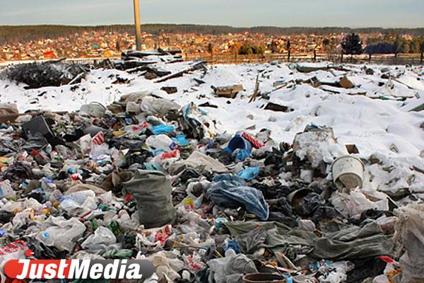 Уральцы за новогодние каникулы «произвели» 220 тысяч кубометров мусора