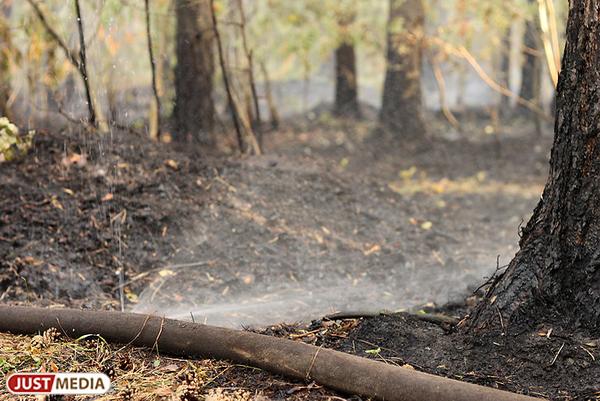 На Уральскую базу авиационной охраны лесов купили новую лесопожарную технику