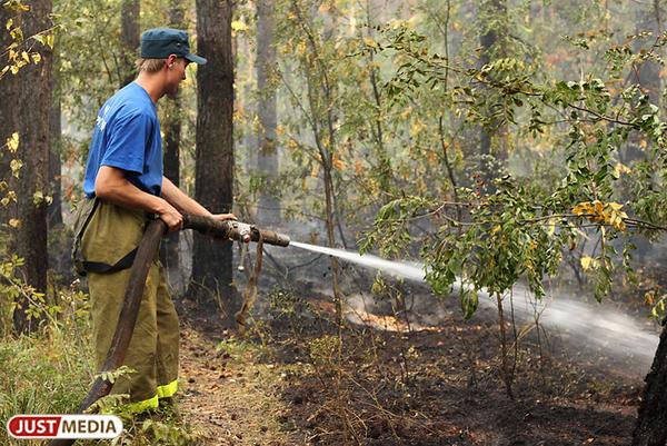 Волонтеров призовут оказывать содействие профессиональным спасателям во время ЧС
