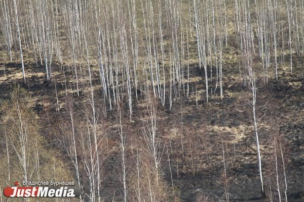 На территории Иркутской области потушены все лесные пожары