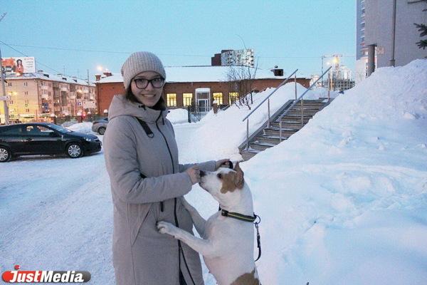 Карина Низамова, тренер стаффорда: «Хлоя очень любит скакать по сугробам, и это у нее не отнять». В Екатеринбурге -5 и небольшой снег