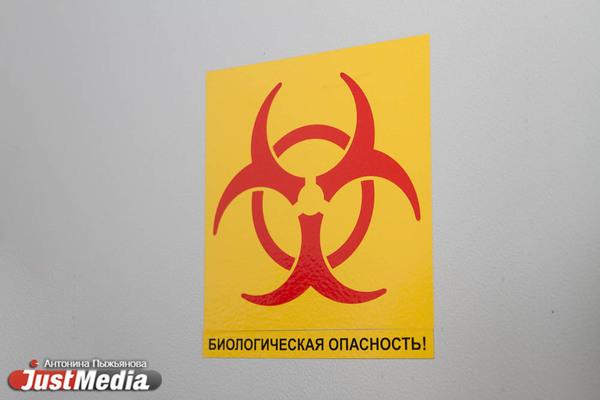 По итогам суток Свердловская область поднялась на четвертое место по заболеваемости коронавирусом