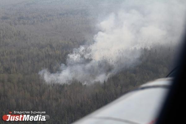 Авиаохрана за сутки потушила 11 лесных пожаров в Свердловской области