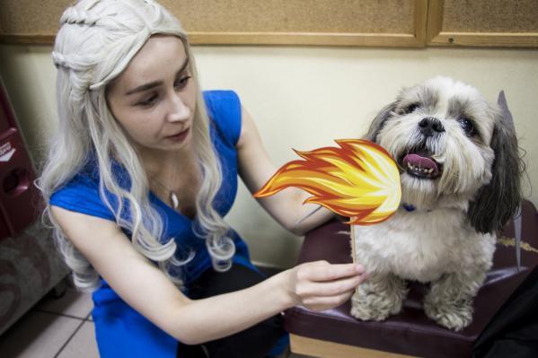 Уральские студенты превратились в героев «Игры престолов» ради бездомных животных