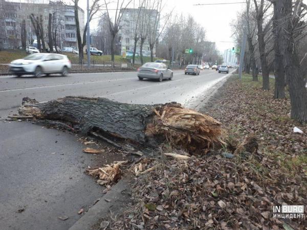 Ураган в Екатеринбурге сносил деревья, заборы и остановки