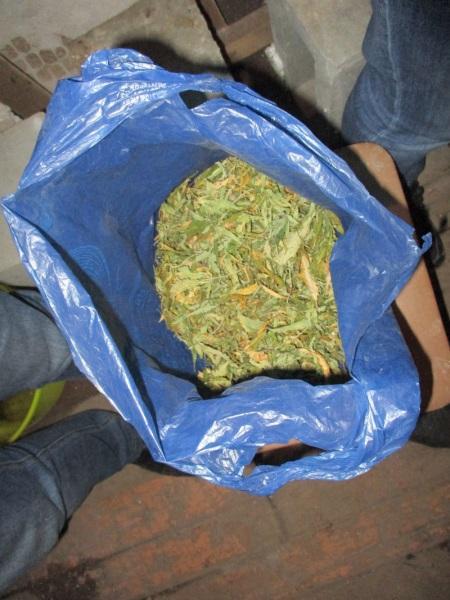 В Нижнем Тагиле полицейские задержали жителя, который выращивал марихуану в гараже