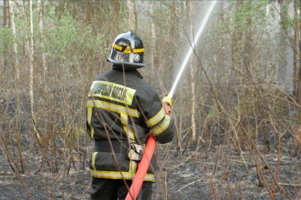 Пожарные поезда Свердловской магистрали помогают подразделениям МЧС тушить природные возгорания
